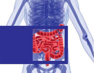 a hpv torokrák tünetei orális rák vírus